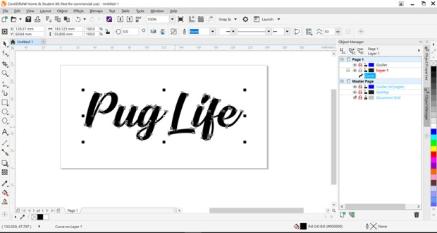pug-life-800x427.jpg